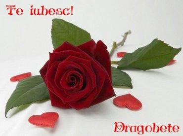 ENTER HERE ALLLLLLLL Te_iubesc_dragobete